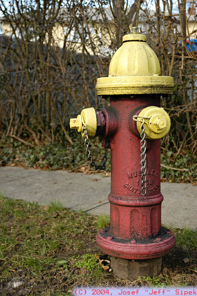 The Hydrant